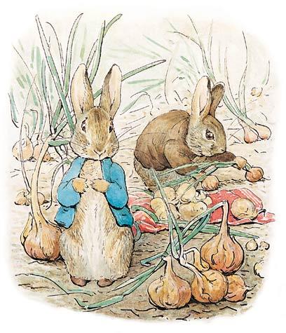 Beatrix Potter-illustrazioni