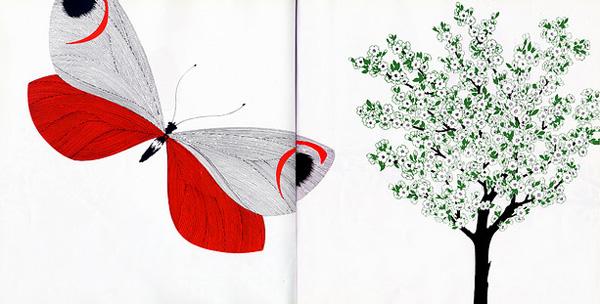 libri-senza-parole-la-mela-e-la-farfalla