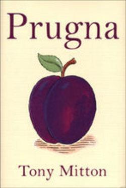 un libro di filastrocche per bambini preziose