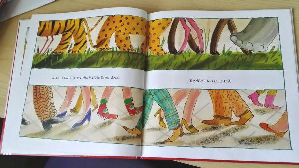 Libro animali e animali