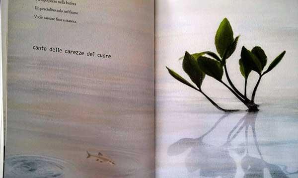 Canti-dell-attesa-pianta