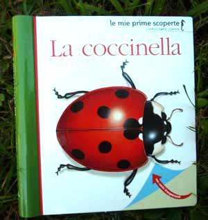 Copertina del libro La Coccinella