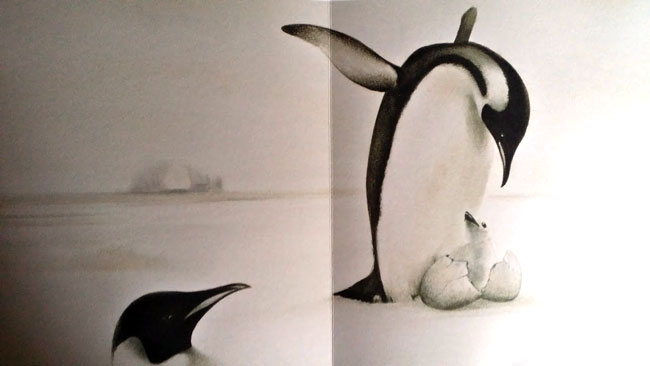 il-pinguino-senza-frac-interno