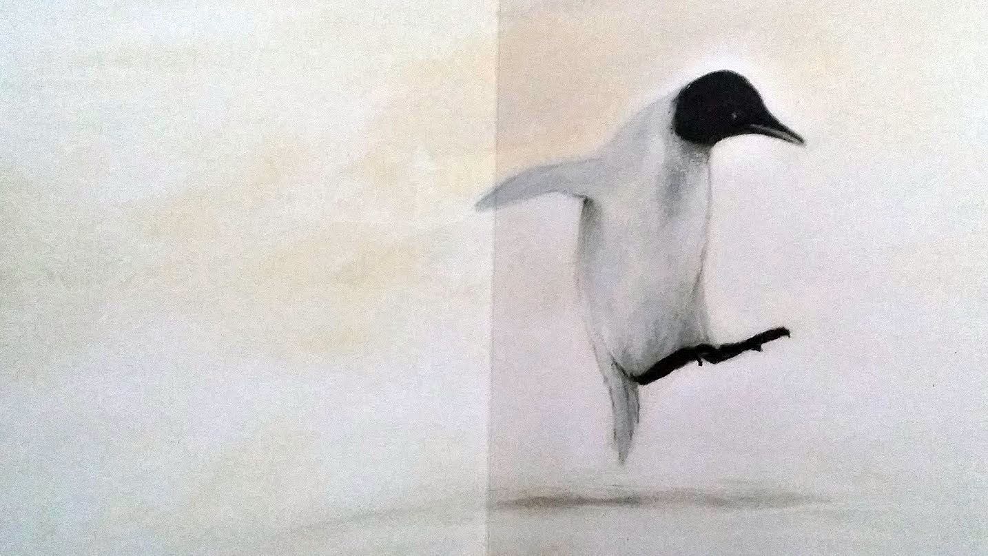il pinguino senza frac-limpo
