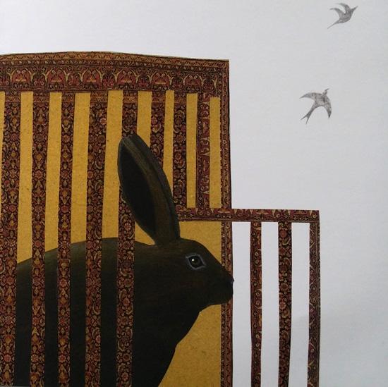 libertà per il coniglio