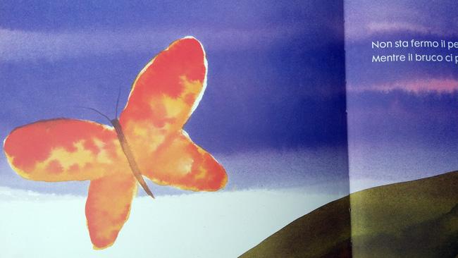 la farfalla vola nel cielo