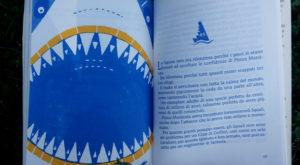 Pinna Morsicata - squalo