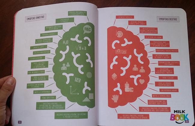 gli emisferi del cervello