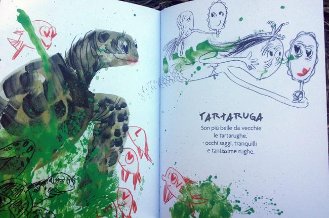 la tartaruga di Mare Matto