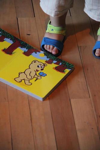 piedino e libro