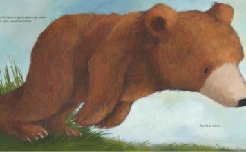 orso si lascia cadere