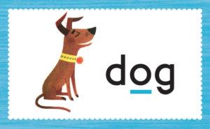 flash card dog