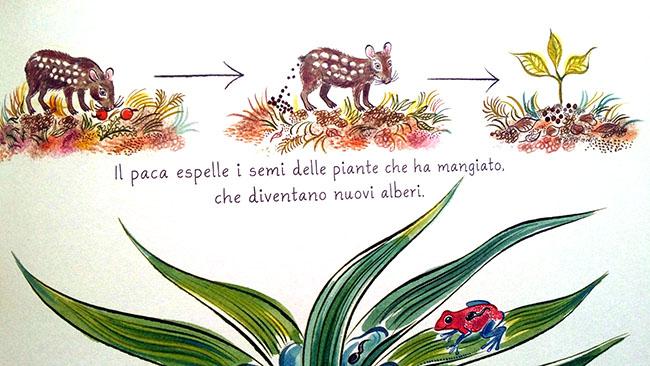 illustrazione tratta da Tanti e Diversi