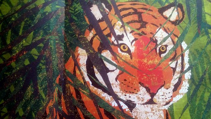 Cuore di tigre