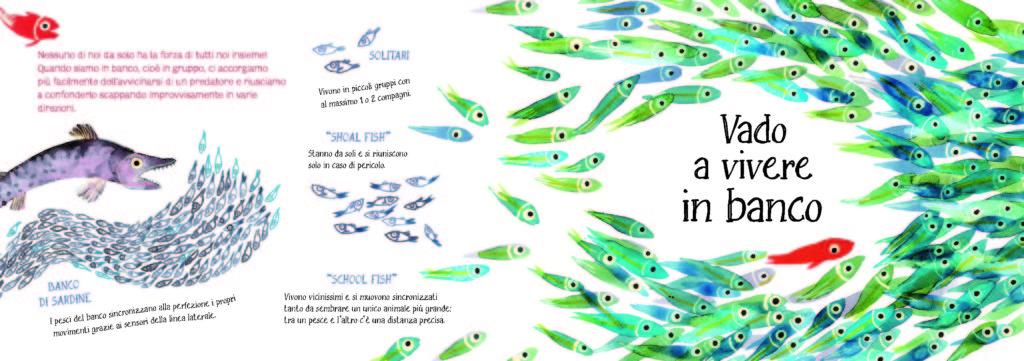 I pesci di Lucia Scuderi