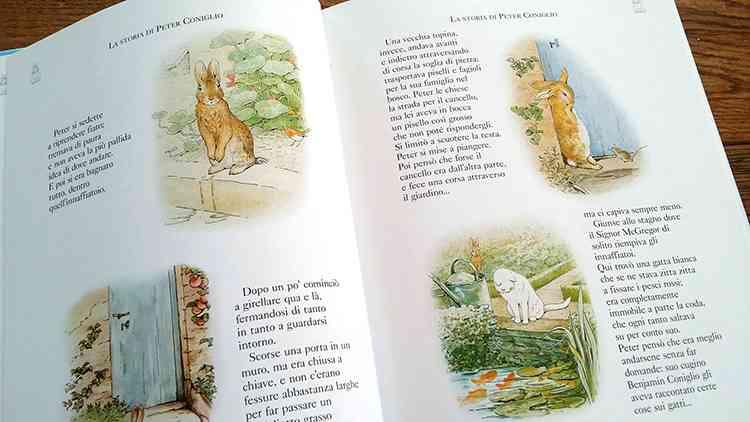 pagine del libro su Peter Coniglio