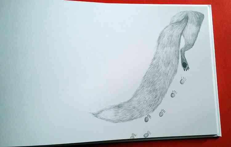 le impronte della volpe