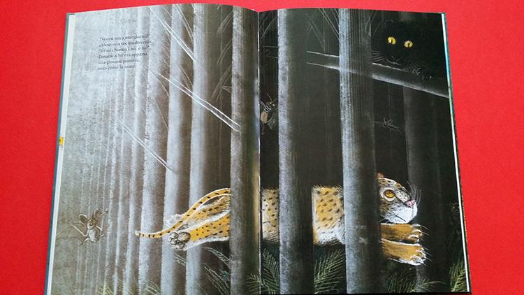 l'incontro tra leopardo e pantera