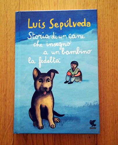 Storia di un cane che insegno a un bambino la fedelta