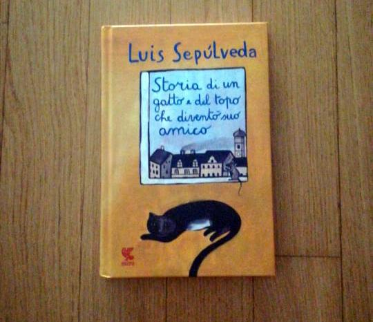 Storia di un gatto e del topo che divento suo amico