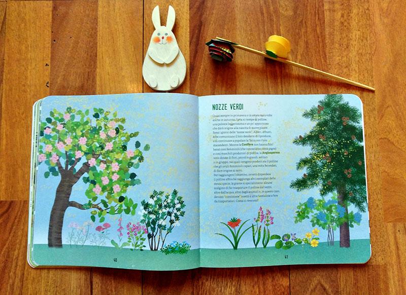 esempi interni del libro