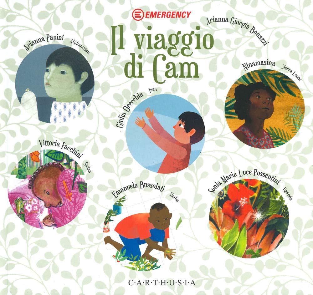 Il viaggio di cam, copertina del libro