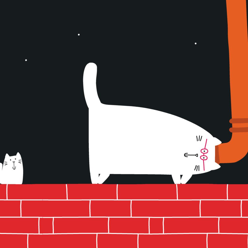 Grande gatto piccolo gatto