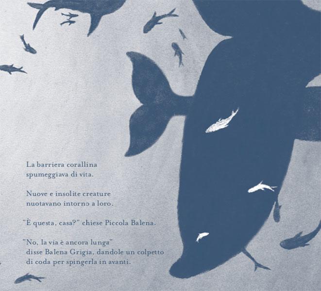interni del libro Piccola Balena