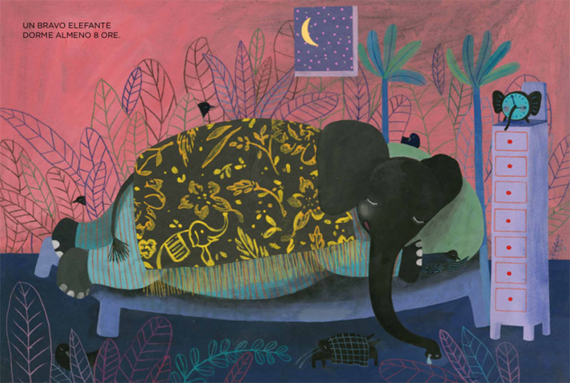 l'elefante dorme