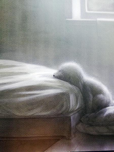 il cane accoccolato sul letto