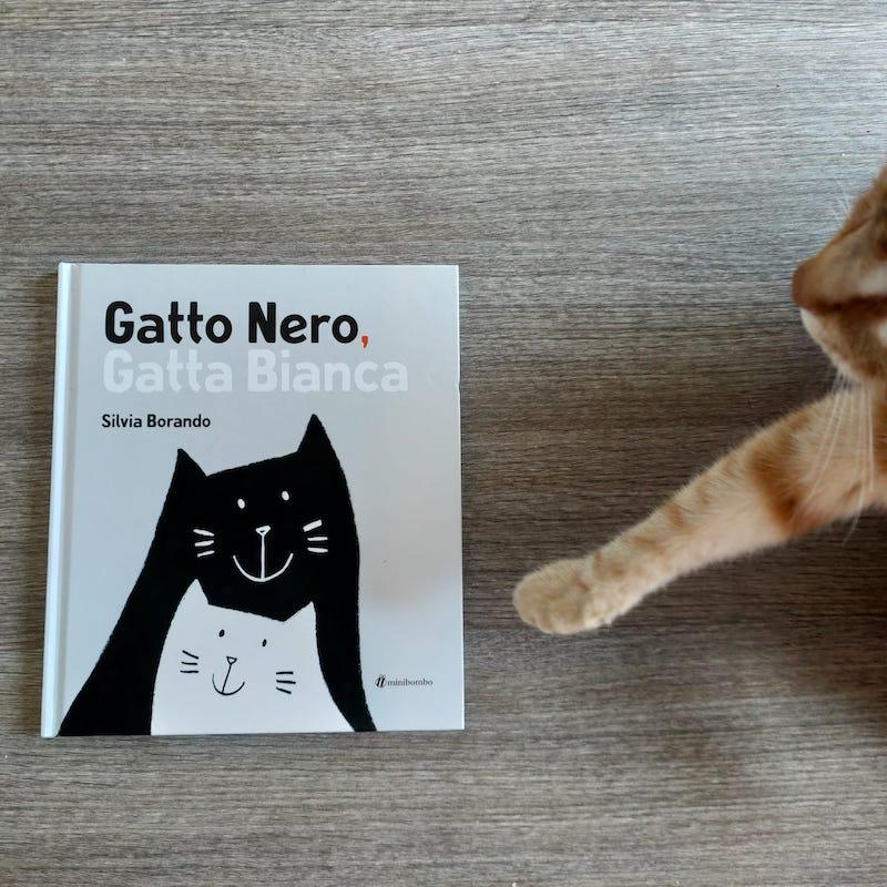 copertina di Gatto nero gatta bianca